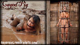 Caged Pig Infernalrestraints.com – gonzoporn.cc