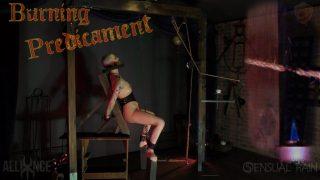 Burning Predicament Sensualpain.com – gonzoporn.cc